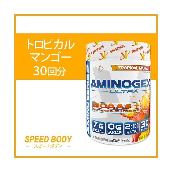 Aminogex ULtra BCAA トロピカルマンゴー 30回分 VMI Sports speedbody