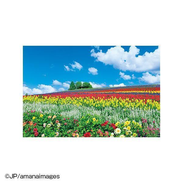 やのまん ジグソーパズル 風景 富良野を彩る花の丘(北海道)10-1344
