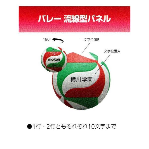 個人名入り小学生用4号軽量試合球 モルテン 全日本小学生大会公式試合球 1パネルネーム≪代引き不可≫