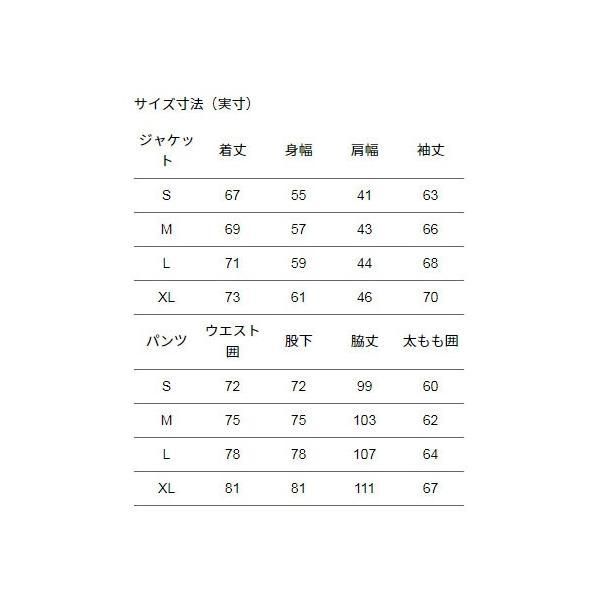 ノースフェイス レインテックスプラズマ メンズ レインウェア 上下セット NP11700|sportsx|04