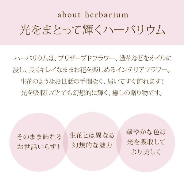 ハーバリウム 丸瓶 母の日 プレゼント / プリザーブドフラワー ドライフラワー 誕生日 ギフト 結婚祝い 開業祝い 送料無料 植物標本|springch|05