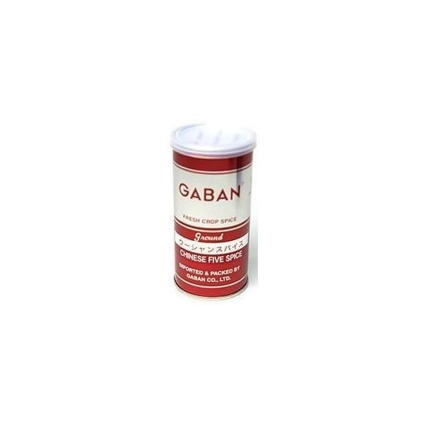 GABAN(ギャバン) 業務用 ウーシャンスパイス 五香粉 65g 缶