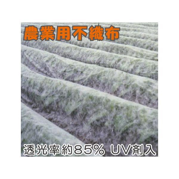農業用 不織布 1.5m×50m UV剤入 保温シート 農用 防鳥ネット 防虫シート ロール 農業資材 園芸資材