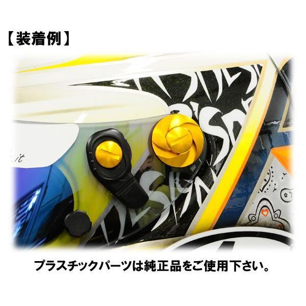 GAZE シールドネジセット アライGP5/6シリーズ用 star5 04