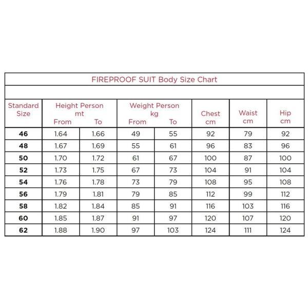 プーマ レーシングスーツ カート用 KART CAT2 CIK-FIA LEVEL2公認 PUMA|star5|06
