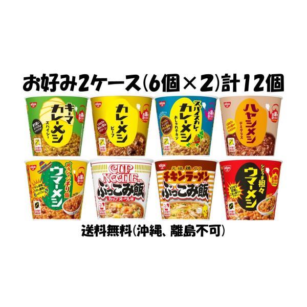 日清食品カレーメシ・ぶっこみ飯・ウマーメシシリーズお好み2ケース計12個 6個入×2 (沖縄・離島不可)人気の選べる2ケース