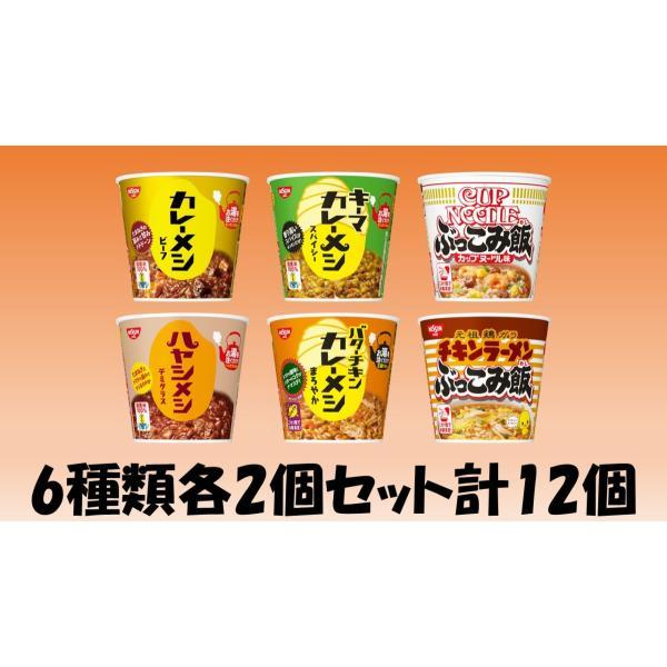 日清食品ぶっこみ飯カレーメシ6種類各2個セット計12個(沖縄離島不可)