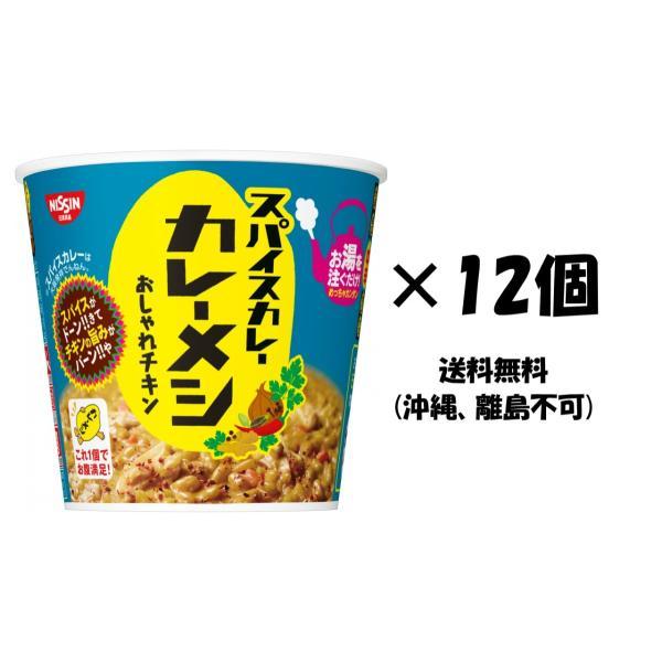 日清食品スパイスカレーカレーメシおしゃれチキン12個(沖縄離島不可)