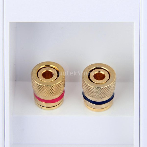 Fenteer デュアル ポスト スピーカー フェースプレート バインディング バナナ/スペードプラグ/ケーブル用