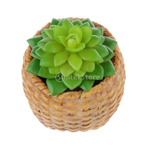 SONONIA プラスチック製 人工 多肉植物 ジューシー タッチ クワズイモ 花 観葉植物 装飾
