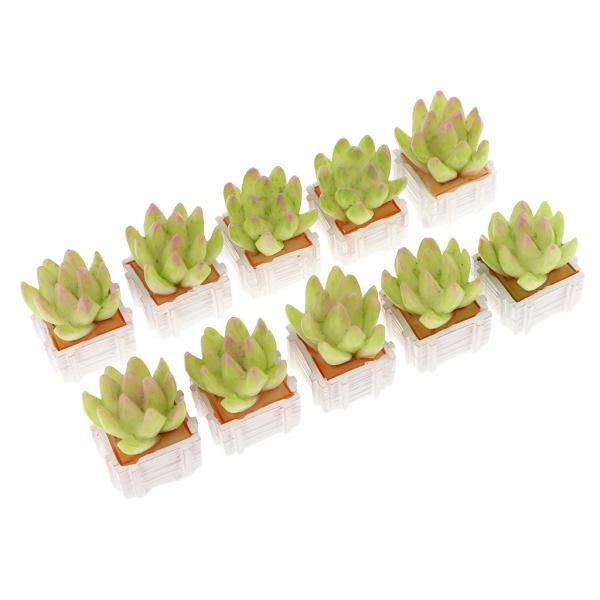 1:12ドールハウスのための白い四角ポットの10個のミニチュア多肉植物