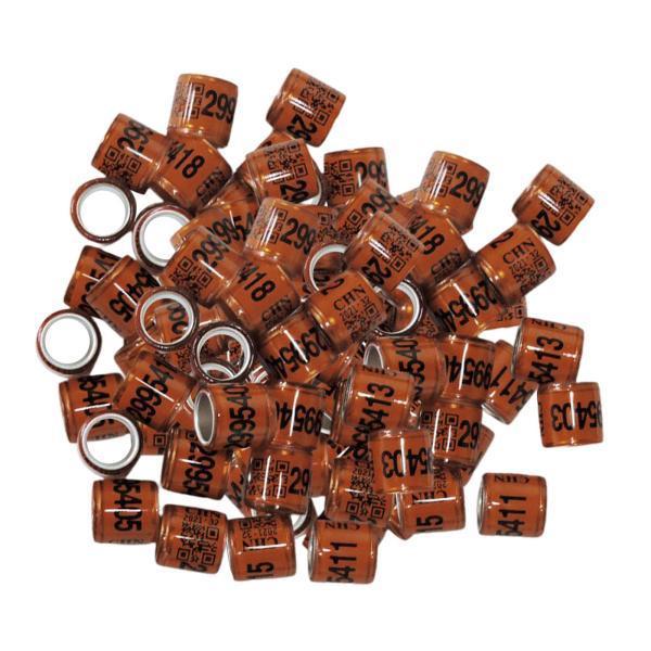 100pcsはカナリアコーヒー用の鳩の指輪脚の指輪鳩バンドを識別します