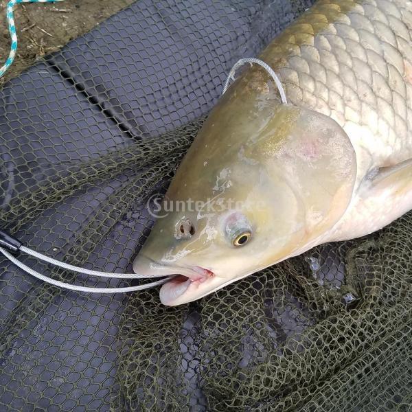 Dovewill 魚保護用 ポータブル  折り畳み式 マット  釣りアクセサリー