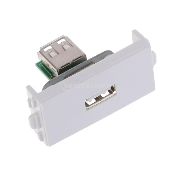 Fenteer 電気 USB ウォール ソケット モジュール モジュラー ドック ステーション レセプタクル 直接プラグ