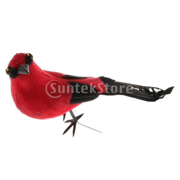 シミュレーション鳥の模型の像の鳥の鳥の家の装飾|stk-shop|11