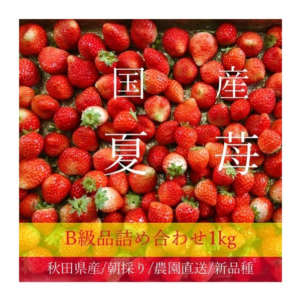 (訳あり)良食味の新しい夏秋イチゴ(秋田県産なつあかり)1kg(市販4pc分) 無選別品詰め合わせ|strawberryfarm