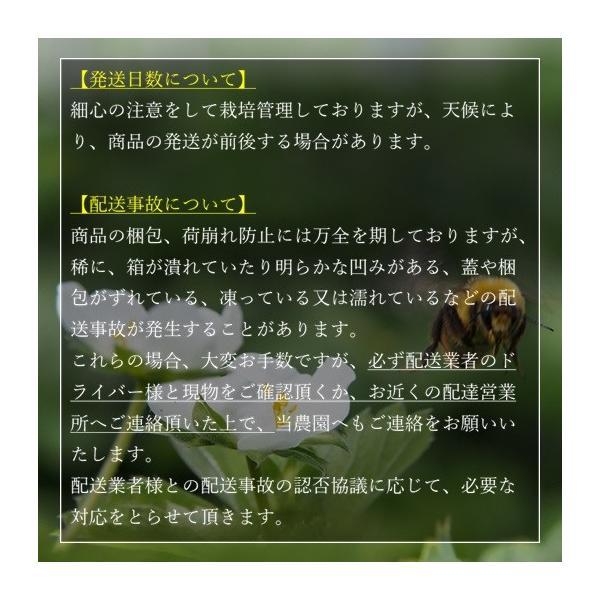 (訳あり)良食味の新しい夏秋イチゴ(秋田県産なつあかり)1kg(市販4pc分) 無選別品詰め合わせ|strawberryfarm|07