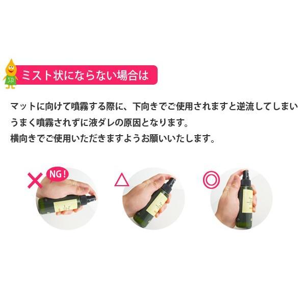 ヨガスプレー シャンティ ヨガマット リフレッシュナー100ml クリーナー 柑橘 アロマ shanti|style-depot|02