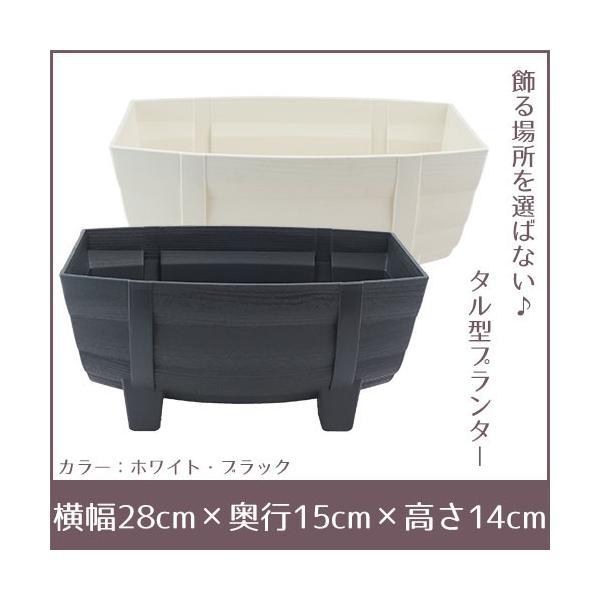 季節の寄せ植え 夏 おしゃれなタル型鉢 白 送料無料 沖縄・離島を除く style1187 12
