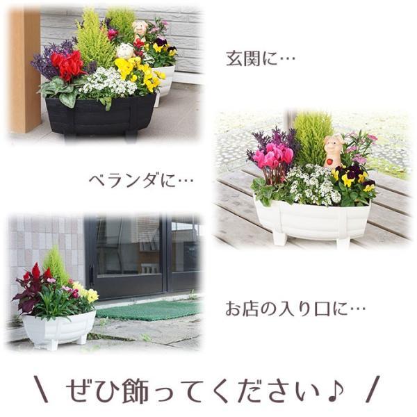 季節の寄せ植え 夏 おしゃれなタル型鉢 白 送料無料 沖縄・離島を除く style1187 05