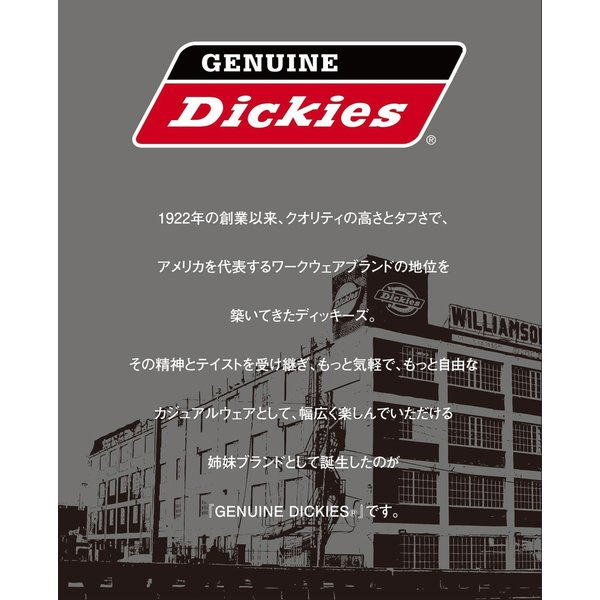 ディッキーズ DICKIES チノパンツ メンズ チノ チノパンツ ワークパンツ スリム 大きいサイズ XL XXL アメカジ きれいめ 92 ストレッチ GENUINE DICKIES|styleupstore|02