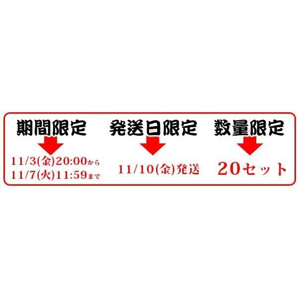 赤からつけ麺 3食入 / チルド生めん / チャーシューブロック付 / 通販限定版 / すがきや スガキヤ 寿がきや sugakiya|sugakiyasyokuhin|06