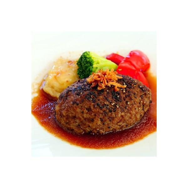 タテガミ入り馬肉ハンバーグ (130g) 菅乃屋シェフのお惣菜 おろしポン酢付 おうちごはん