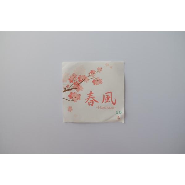 春風(2本入)【並寸・二寸伸】◆クリックポスト利用可◆|sugiyama-kyuguten