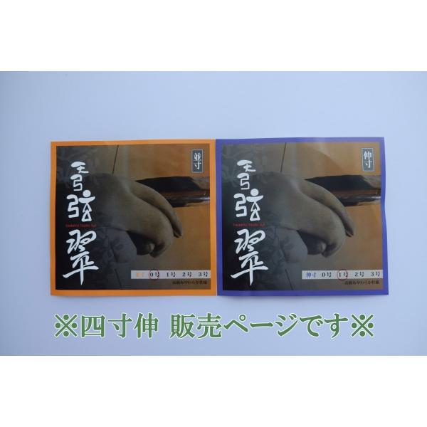 天弓弦 翠(2本入)【四寸伸 0〜2号】◆クリックポスト利用可◆|sugiyama-kyuguten