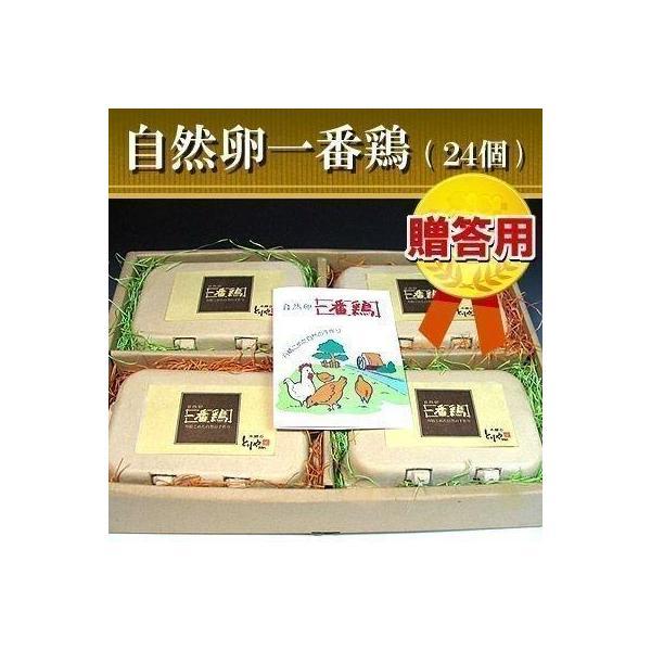 鶏卵 贈答用 放し飼い自然卵 一番鶏 24個詰 (20個+破損保障分4個) ギフト箱入り 御歳暮(お歳暮)ギフト