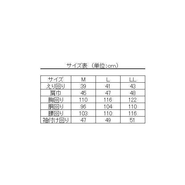 ワイシャツ 半袖 形態安定 スリムシルエット デュエボットーニ ボタンダウン 39Y149-20|suit-depot|04