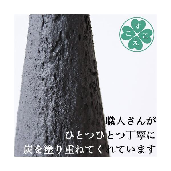 【送料無料】【炭 インテリア】【脱臭剤】森の炭の森 S&Mセット|sukoeco|03