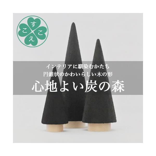 【送料無料】【炭 インテリア】【脱臭剤】森の炭の森 S&Mセット|sukoeco|05