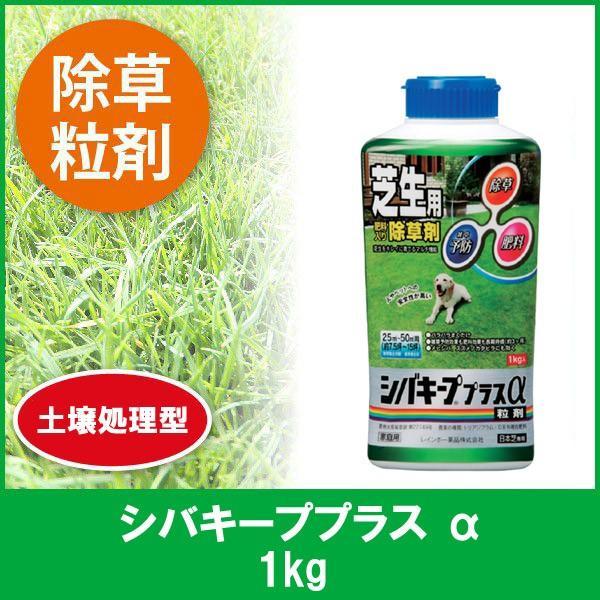 芝生 除草剤 シバキーププラス a 1kg 4903471309435|sun-wa