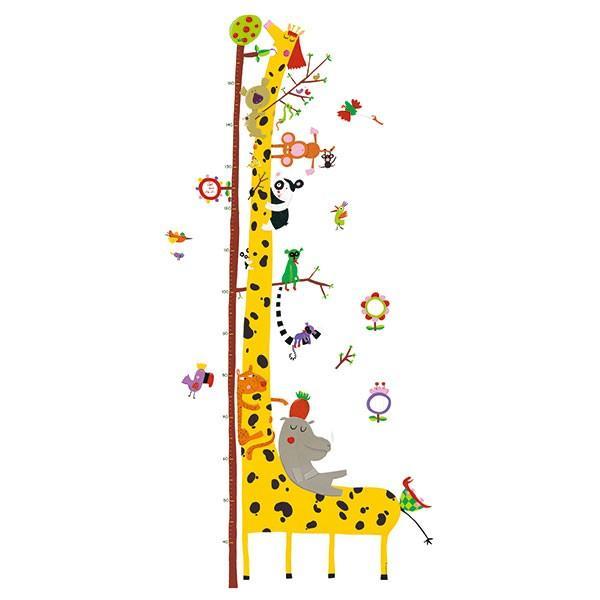 DJECO ジェコ 身長計 アマゾン DD04037 知育玩具|sun-wa|02