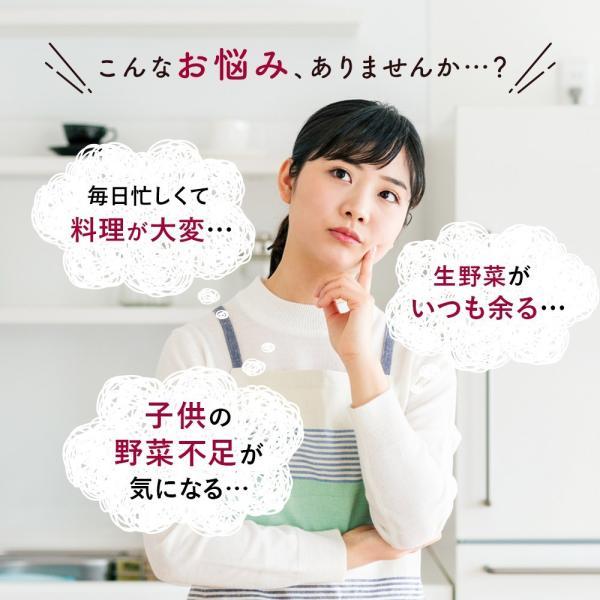 乾燥野菜 国産 九州 ドライベジ 1袋 ラーメン 味噌汁 等に入れるだけ 野菜不足 に 4種の野菜 ゆうパケットのため代引不可|sunao-syokudou|07