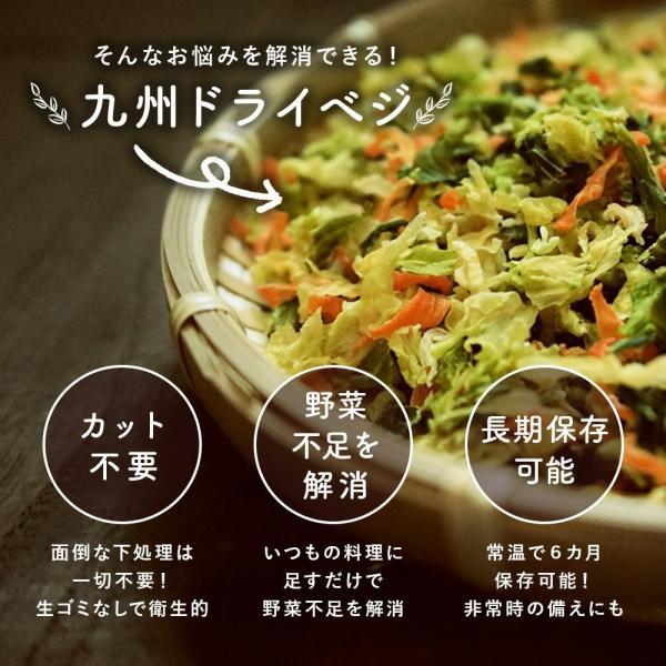 乾燥野菜 国産 九州 ドライベジ 1袋 ラーメン 味噌汁 等に入れるだけ 野菜不足 に 4種の野菜 ゆうパケットのため代引不可|sunao-syokudou|08