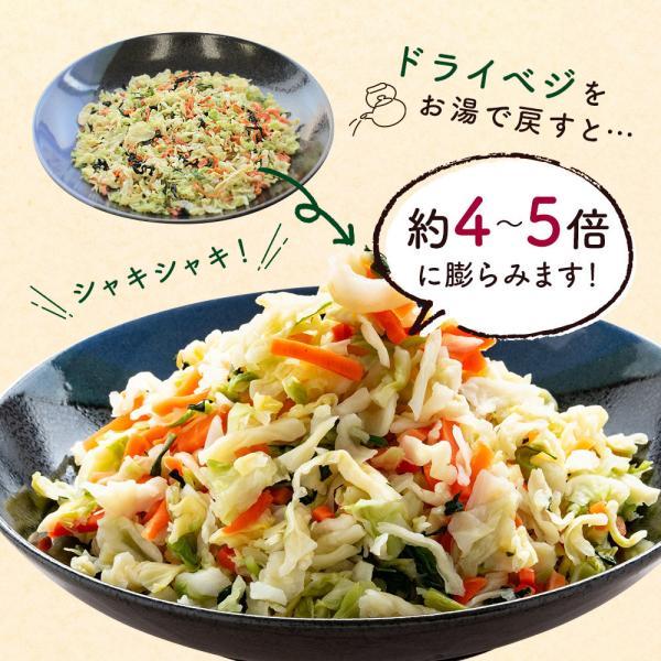 乾燥野菜 国産 九州 ドライベジ 1袋 ラーメン 味噌汁 等に入れるだけ 野菜不足 に 4種の野菜 ゆうパケットのため代引不可|sunao-syokudou|09