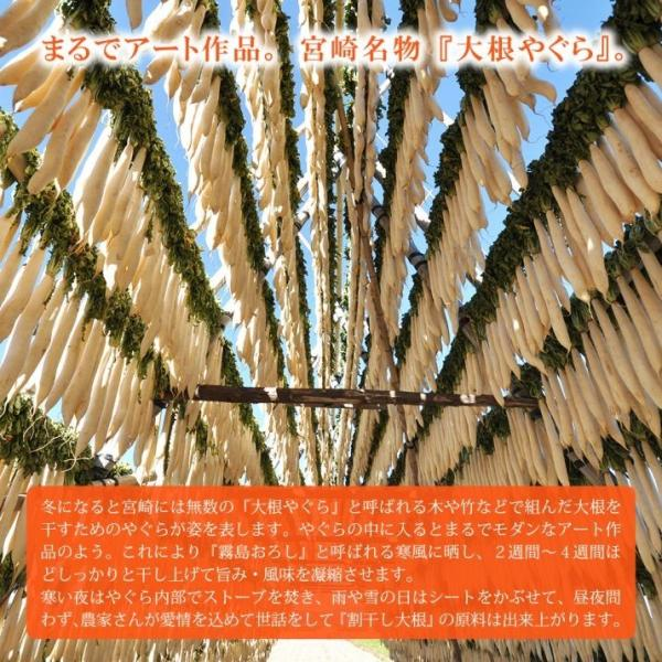 キムチ お試し 2種 国産 干し大根 きゅうり 九州 お取り寄せ グルメ おつまみ ごはんの供 ポイント消化 ゆうパケット(出荷目安:1〜2週間)|sunao-syokudou|06