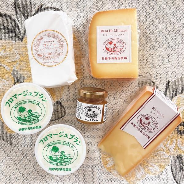 チーズ詰め合わせ  共働学舎 牛乳山セット春夏バージョン 自宅用 代金引換配達不可 産地直送品