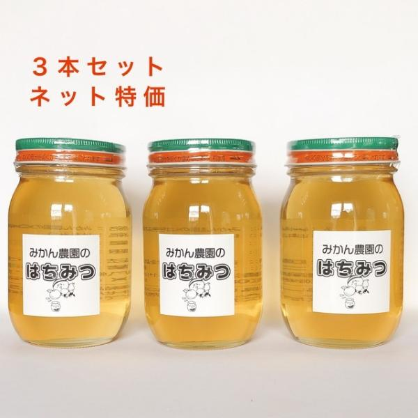 New!はちみつ 蜂蜜 国産ハチミツ 蜂蜜 2021年産愛媛みかんの花100%はちみつ600g×3瓶 お買得 産地直送(沖縄配送不可)