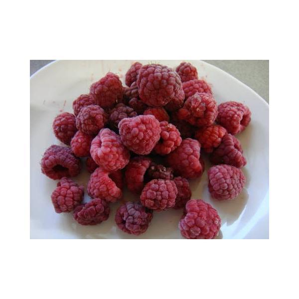 冷凍ラズベリー(500g) sunfarm