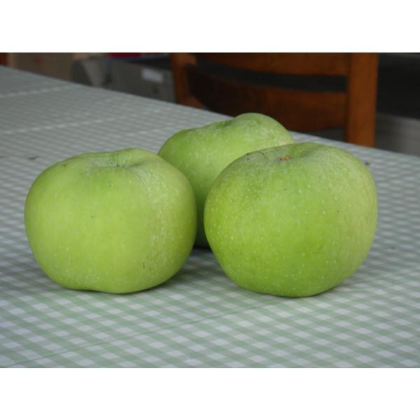 りんごジャム(ブラムリーズ・シードリング)|sunfarm|02