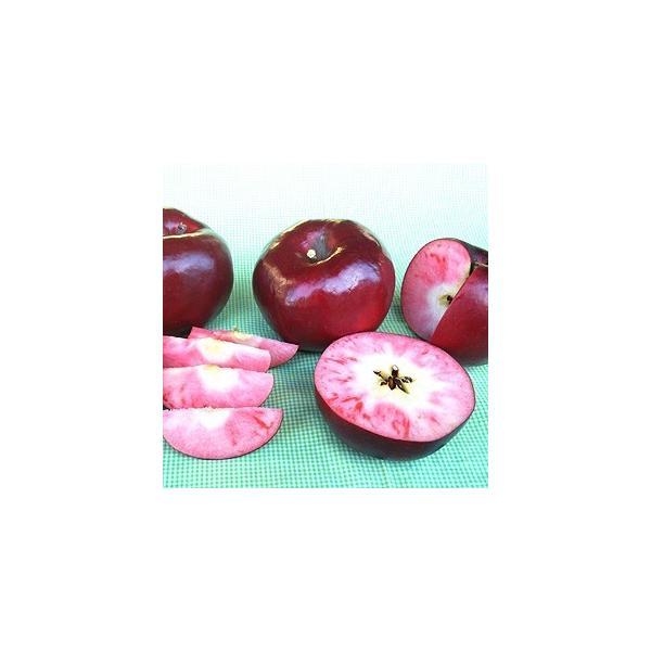 りんごジャム(紅の夢)|sunfarm|02