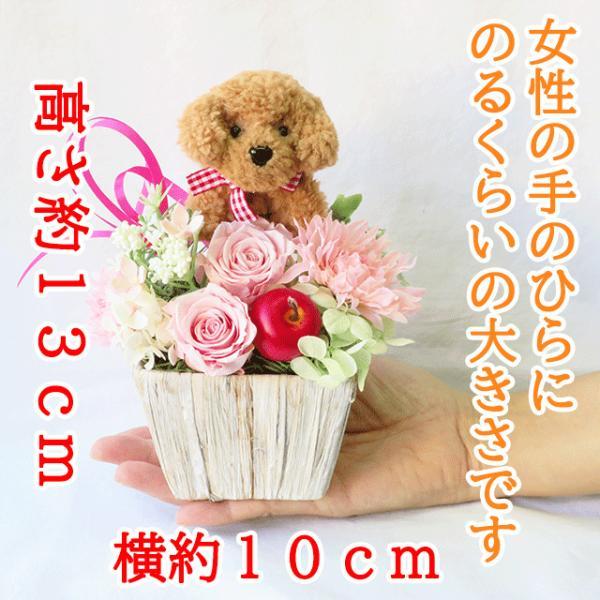 プリザーブドフラワー バラ フラワーアレンジメント 誕生日 花 誕生日プレゼント 女性 花 ギフト|sunmokusui55|02