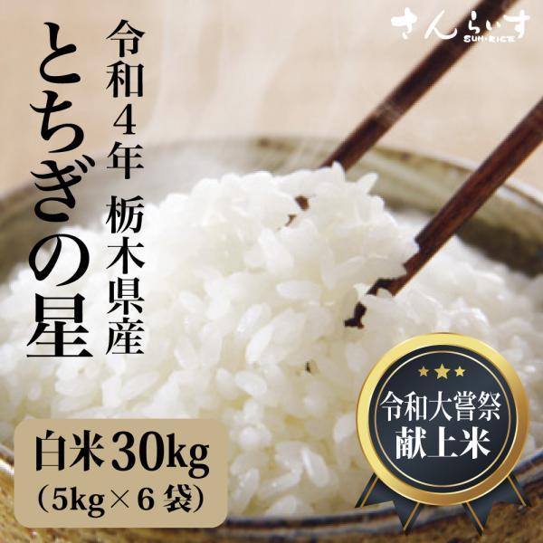 米 30kg お米 白米 5kg×6袋 まとめ買い 業務用米 新米 令和2年 栃木県産 とちぎの星 送料別 離島不可