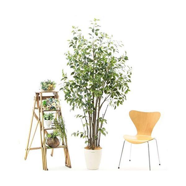 プレミアム銀配合光触媒人工観葉植物 フェイクグリーン92855「ダイナミックな樹形たくさんの枝ワイルド・フィカス ベンジャミン 高さ210c