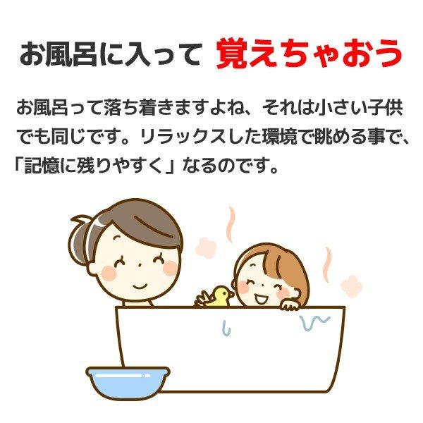 お風呂ポスター「えいごをおぼえよう」 幼児 A3サイズ 両面印刷 アルファベットシート付 sunrise-gogo 05