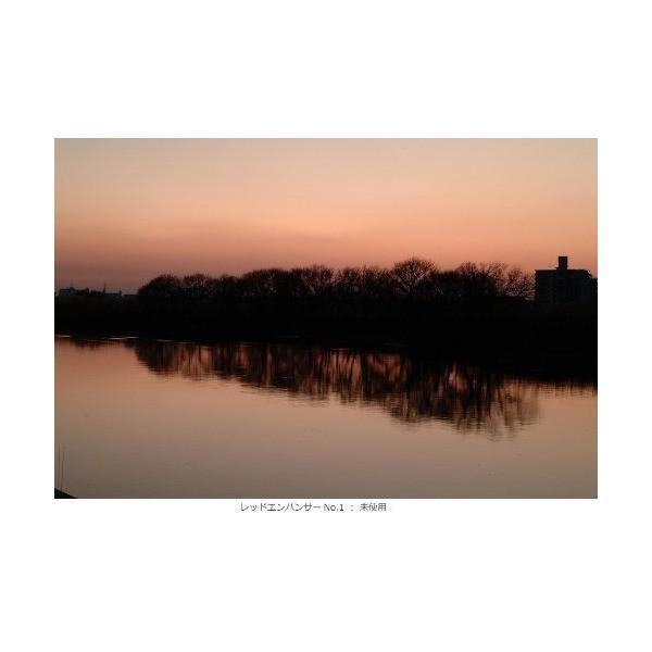 Kenko レンズフィルター レッドエンハンサー No.1 77mm 色彩強調用 317723