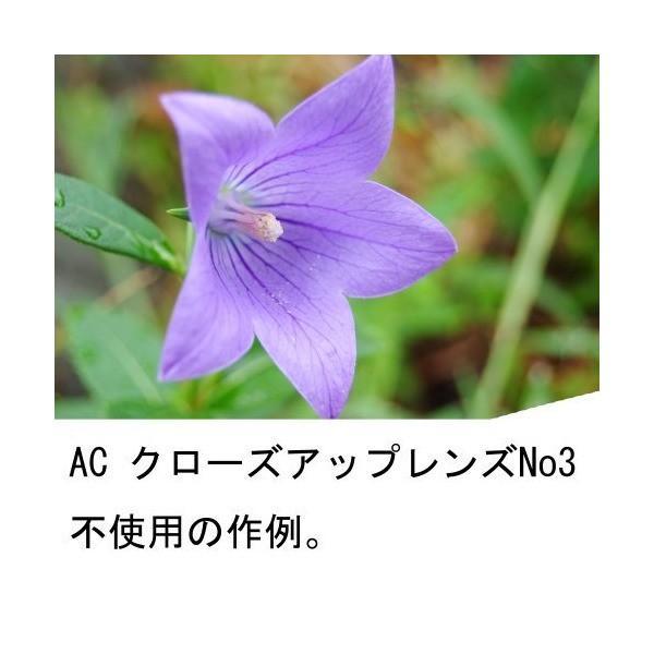Kenko レンズフィルター PRO1D AC クローズアップレンズ No.3 49mm 近接撮影用 024935